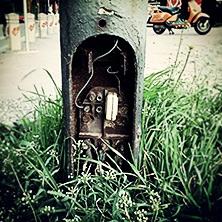 Urbano rastinje #grass #wires